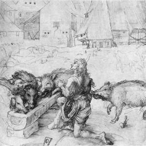 Auch wenn Albrecht Dürer diese Schweine im 15. Jh. abbildete, in ihrem Aussehen hatte sich seit den Karolingern nichts geändert. (Albrecht Dürer, Der verlorene Sohn unter den Schweinen 1497-1498)