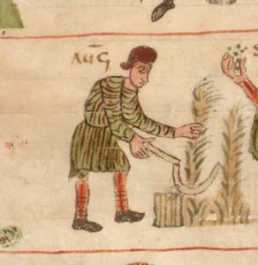 Getreideernte in den Salzburger Monatsbildern. (Salzburg, um 818; Clm 210)