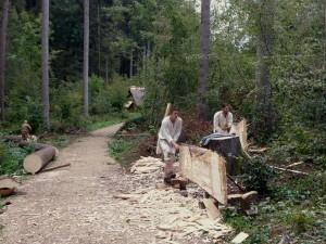 Samuel und Michael schlagen Bohlen aus einem Baum den wir am Tag zuvor gefällt haben. Daniel im Hintergrund spaltet einen Stammabschnitt als Vorarbeit für weitere Bohlen.
