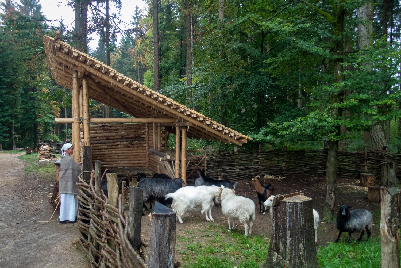 neuer Schafstall eingeweiht